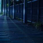 夜のジョギングに必須!腕に巻くバンド型LEDライトGENTOSレビュー