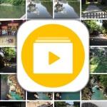 超簡単!iPhone動画をGIF化するアプリImgPlayの紹介