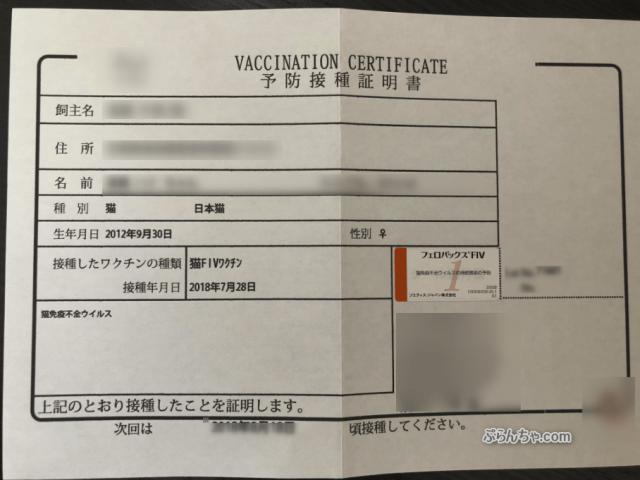 猫エイズ ワクチン 証明書