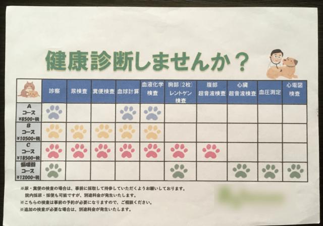 猫 健康診断 費用